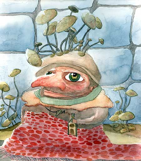 roi des champignons - king of fungi